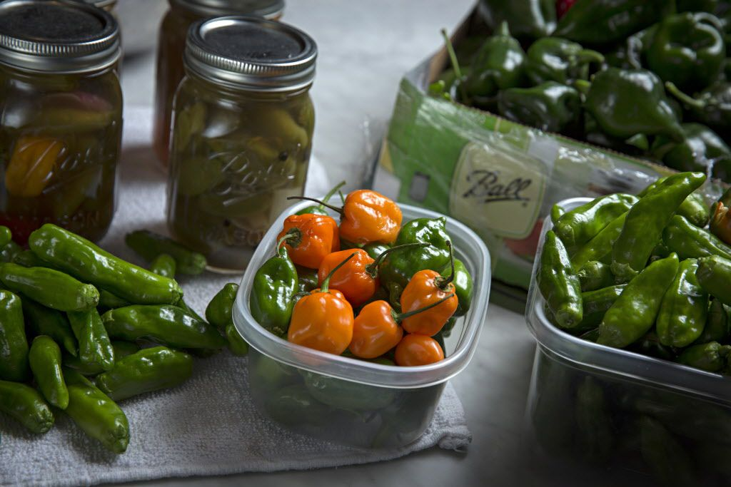 Fresh and recently canned peppers from chef Kent Rathbun's home garden Wednesday, November 11, 2015 in Dallas. (G.J. McCarthy/The Dallas Morning News)