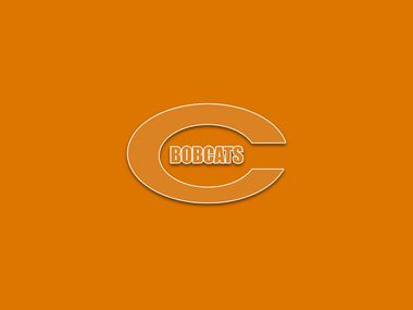 Celina logo.