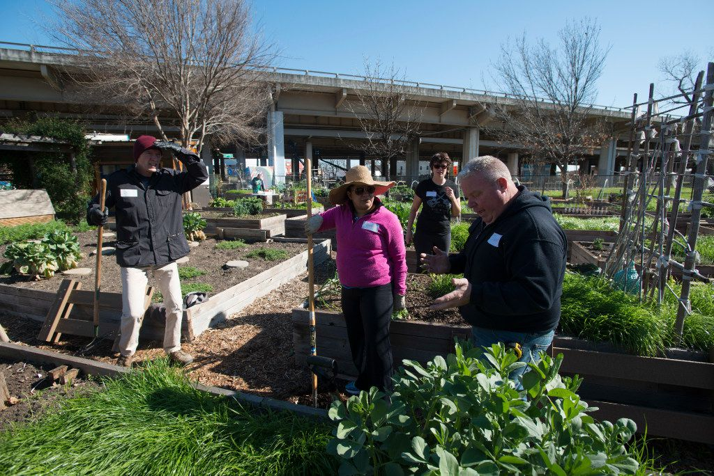 David Kasper (right) talks to fellow members of the Deep Ellum Urban Gardens about how they'€™ll repair the raised beds.