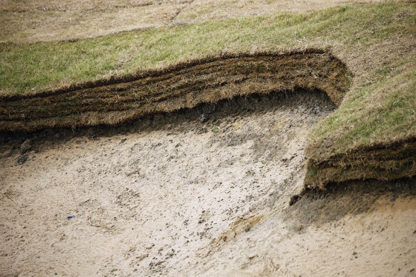 A revetted bunker, partially created by stacking sod on one of the bunkers on the East Course designed by Gil Hanse at PGA Frisco in Frisco, Texas, on Wednesday, May 20, 2020. The $520 million project is a mixed-use development that will be home to the PGA of America headquarters and two championship golf courses.