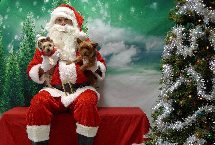 Santa will be back at Operation Kindness this weekend.
