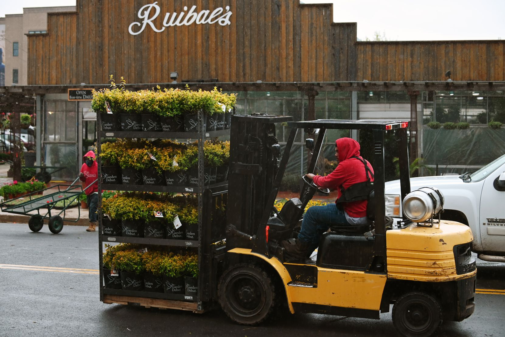 Nahin Sanchez uses a forklift to move fresh inventory at Ruibal's Plants of Texas on  March 22. Ruibal's business is booming as many plant owners and businesses restock for springtime after losing plants in the winter storm.