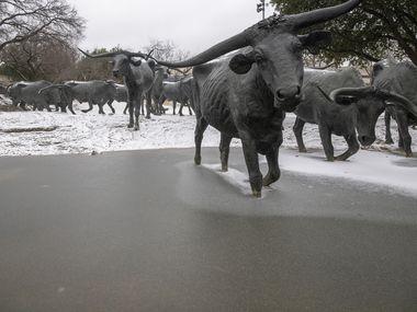 Un manto blanco cubre los alrededores del Centro de Convenciones Kay Bailey Hutchison, incluida el área del monumento en Pioneer Plaza. Dallas se encuentra bajo vigilancia por una tormenta invernal el domingo.