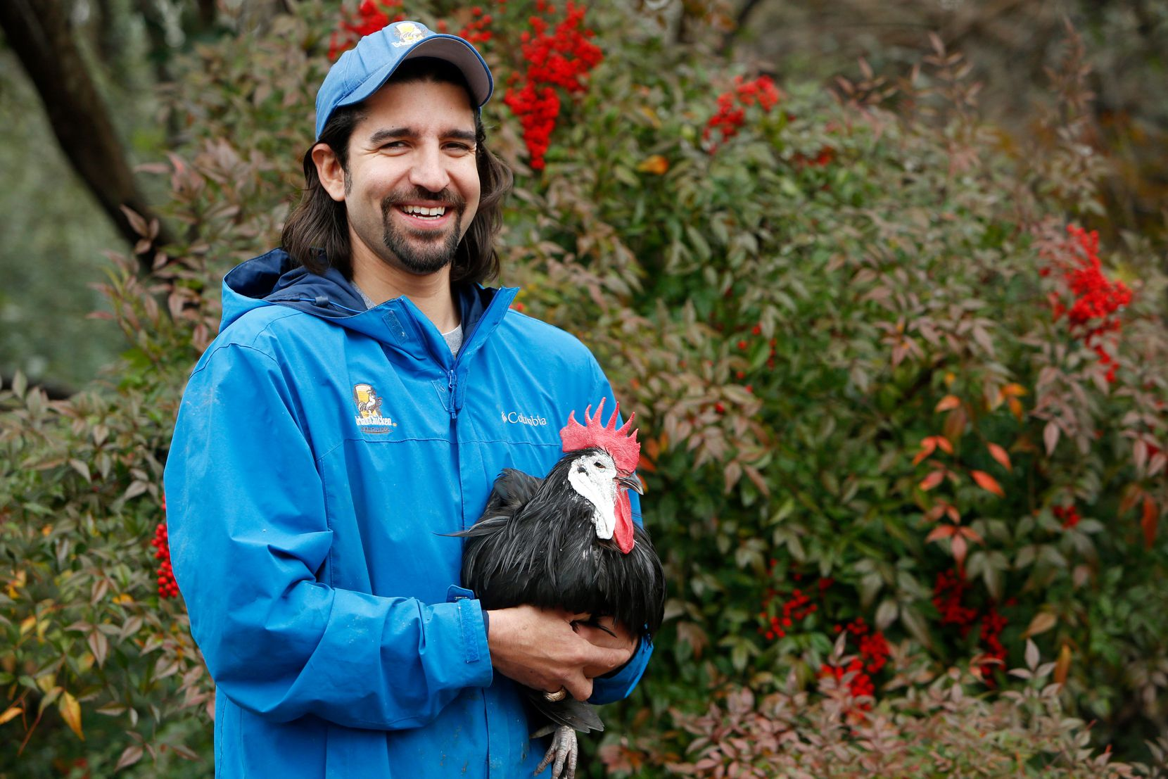 John Ramos, owner of Urban Chicken Ranching, offers consulting services, feed delivery, pet-sitting and other help for Dallasites raising hens.