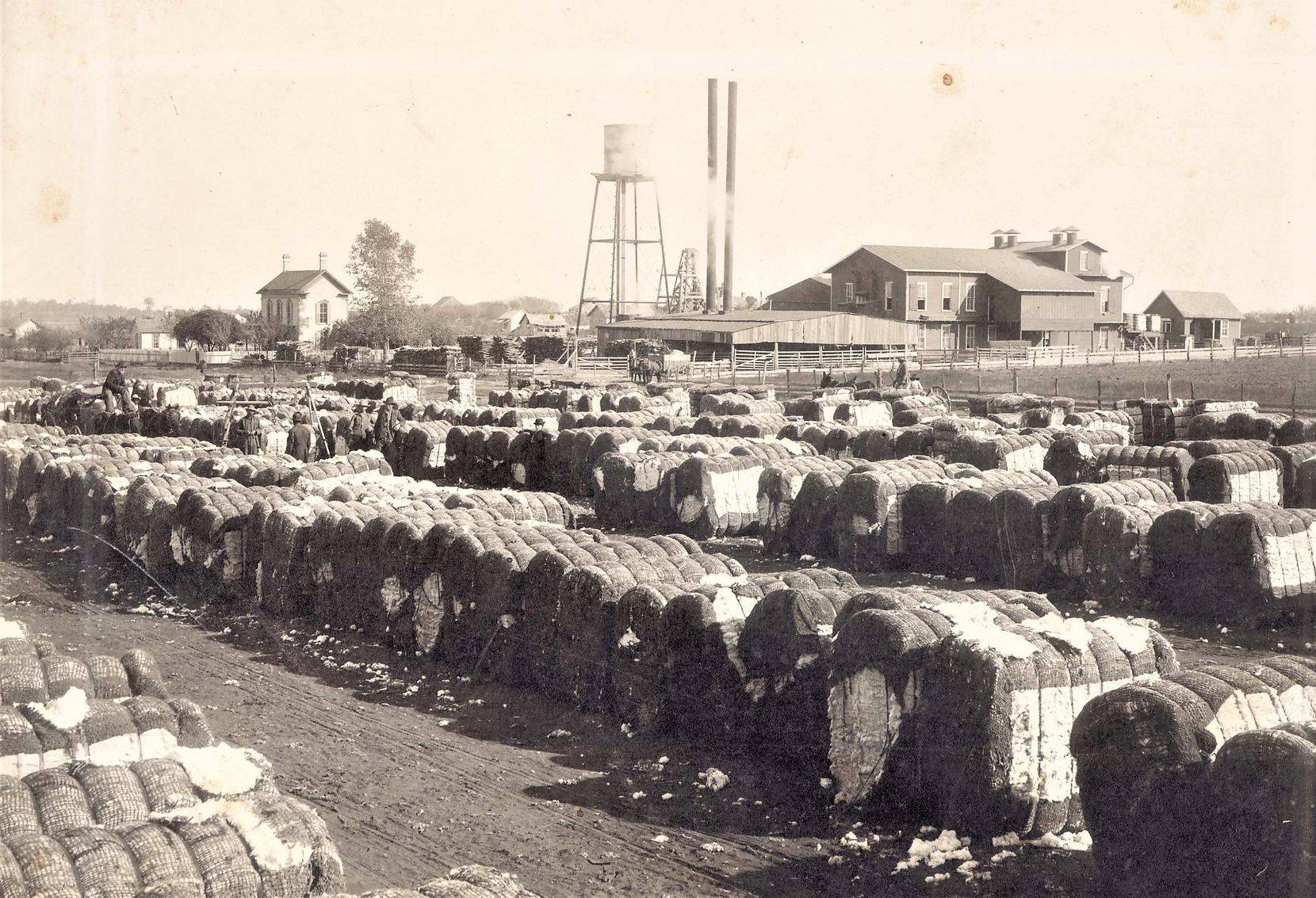 The Selz Cotton Gin in Pilot Point in a historical photo.