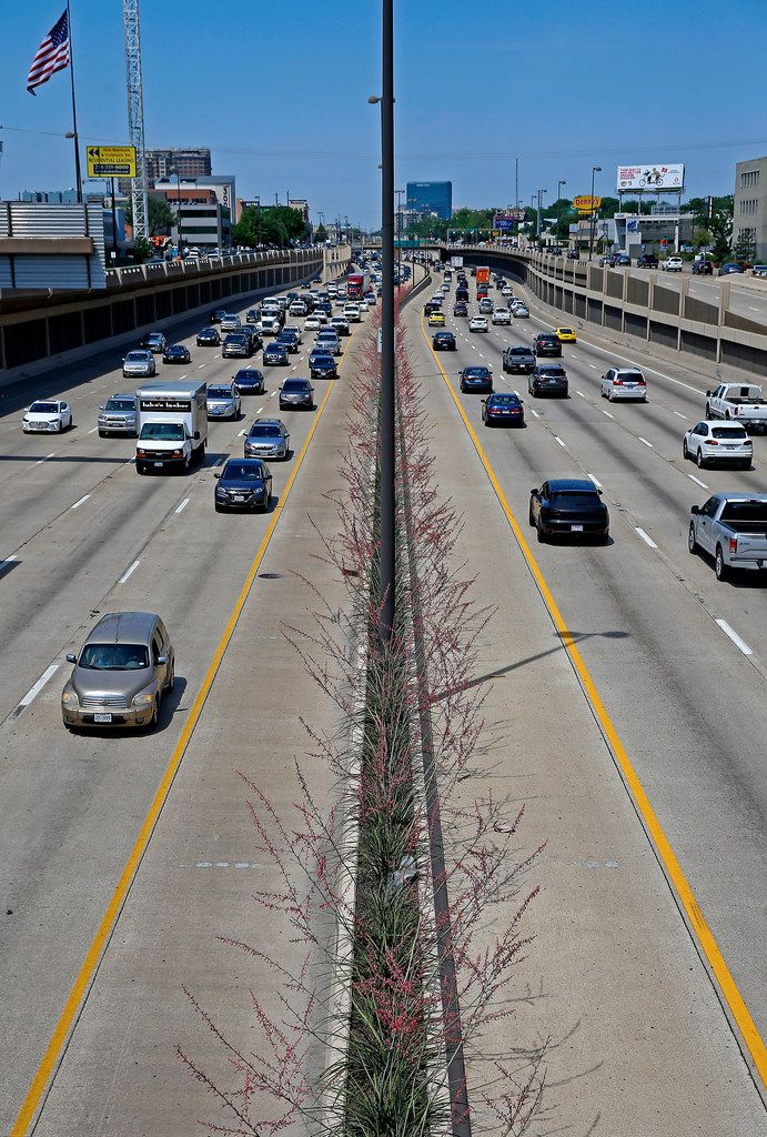 Traffic moves by yucca plants that were planted in the medians along Central Expressway in Dallas.