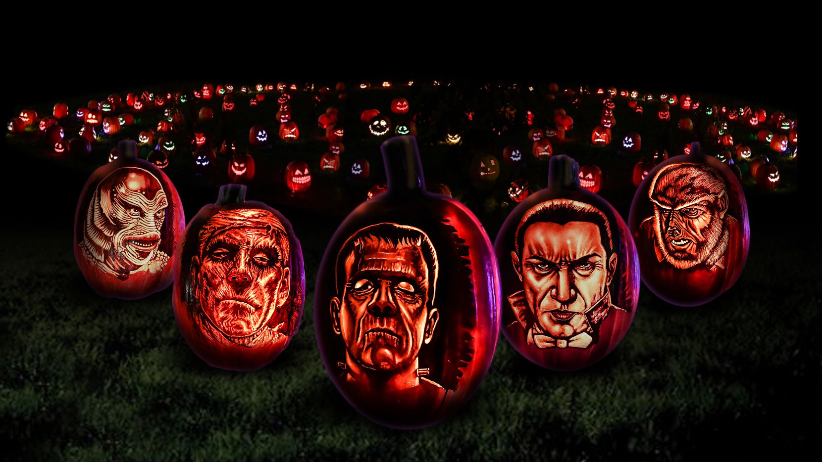 Frights'n Lights Frisco (open through Nov. 6 at Riders Field) is a family-friendly Halloween attraction with carved pumpkins, giant lanterns shaped like horror movie characters, holiday lights and displays, photo ops and a trick-or-treat trail. // Permission via Allison Chvojan, allison@cookseypr.com //