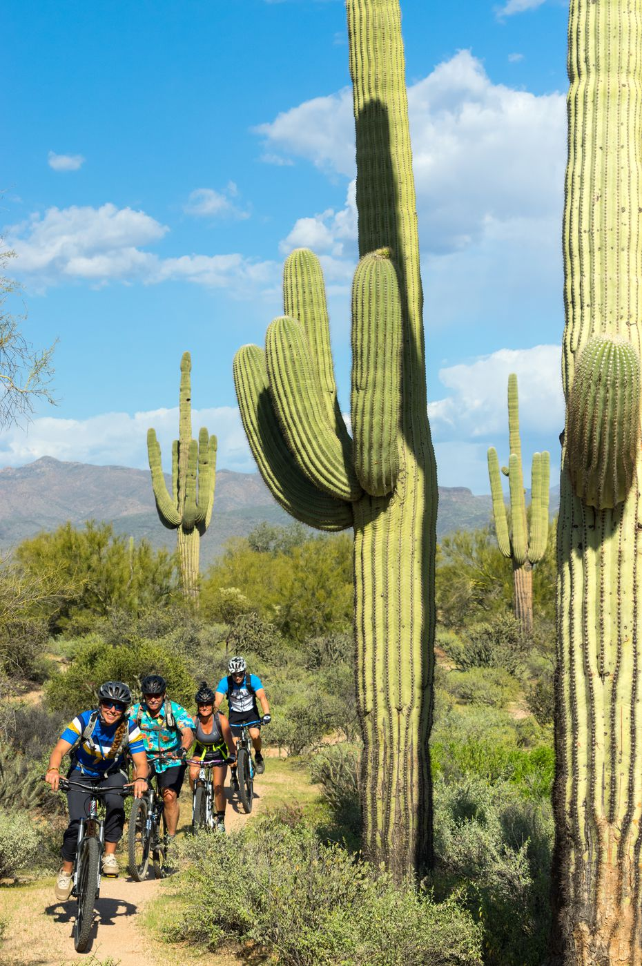 Mountain bikers ride in the sprawling McDowell Sonoran Preserve.