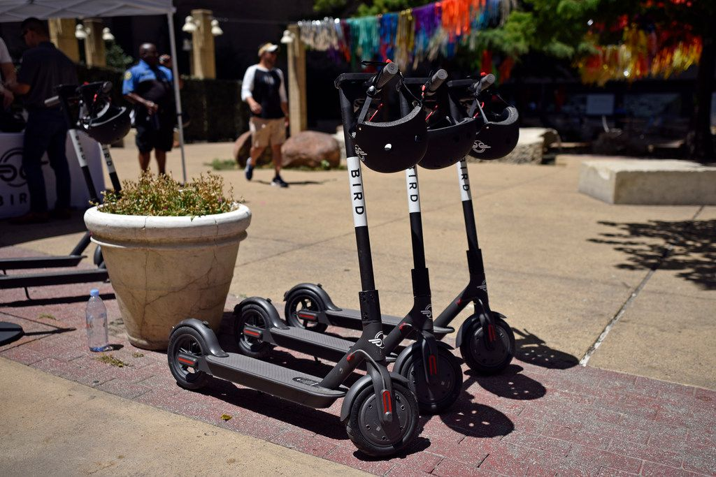Scooters from the electric scooter company Bird in downtown Dallas.