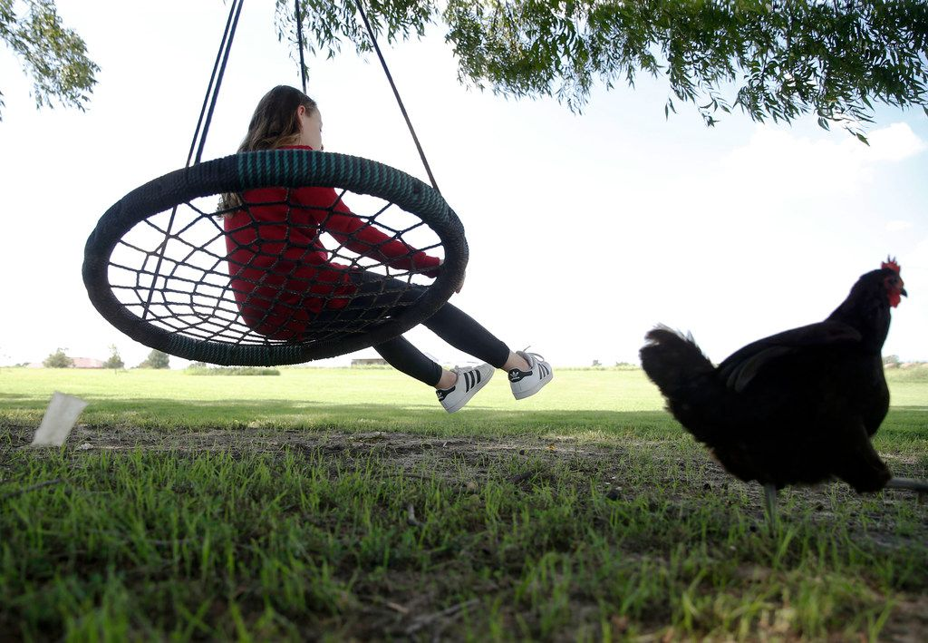 Aubrey Reeves, 10, plays on the swing as a chicken walks by at their home in Princeton