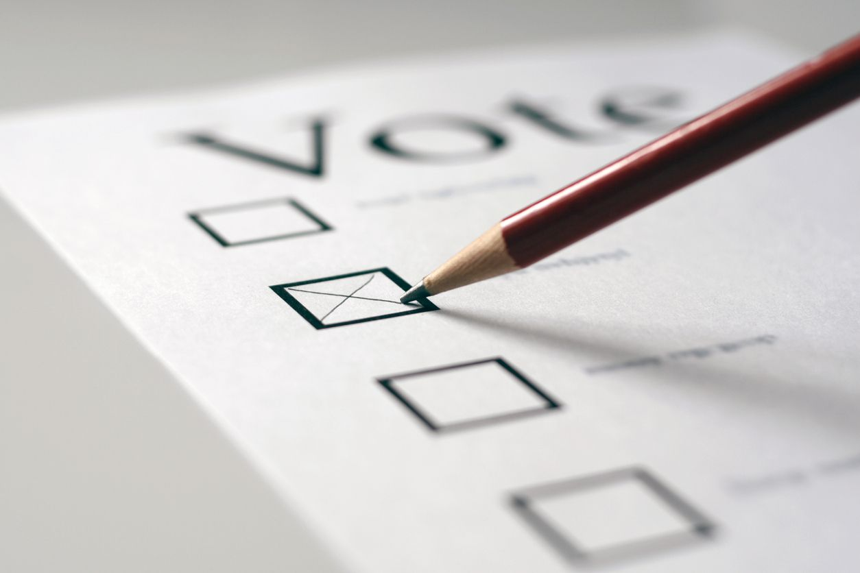 Richardson voters will have City Council and School Board races on the ballot in the upcoming election.