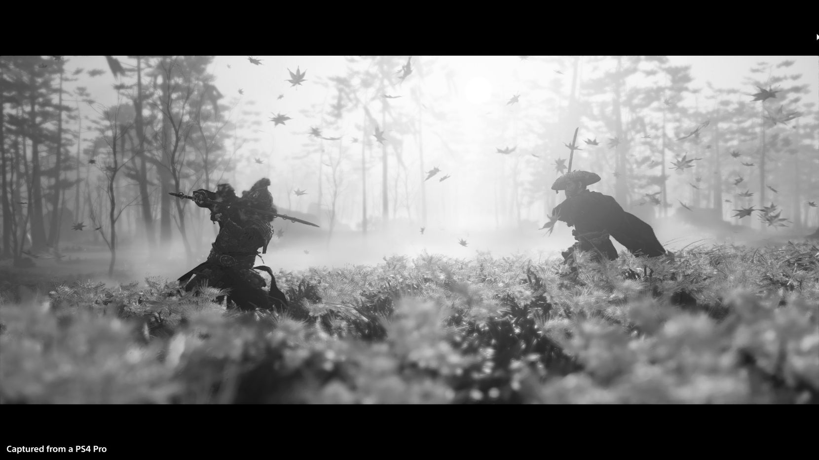 A screenshot taken with the photo mode in 'Ghost of Tsushima' on the PlayStation 4.