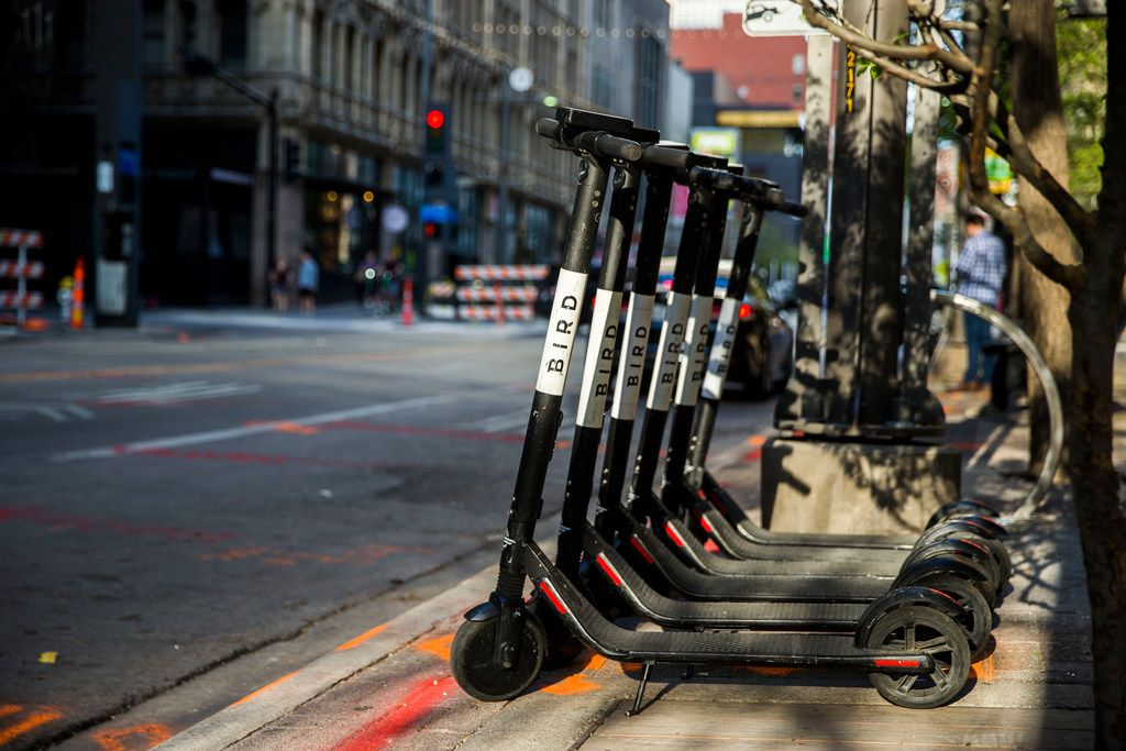 Bird scooters parked near the curb at the 1400 block of Main Street in Downtown Dallas on Sunday, March 24, 2019. Daniel Carde/The Dallas Morning News)