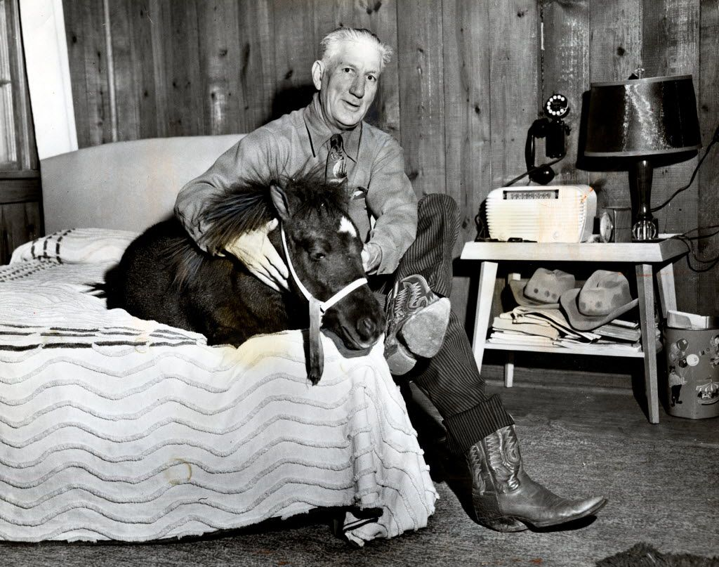 Oct. 30, 1949: PERUNA HAD A GOOD NIGHT'S SLEEP — Peruna was safe and comfortable before the game — Claude Fussell, manager of the Rendezvous Stables, saw to that.   Just to make sure the SMU mascot wouldn't be swiped by Texas students before the big game, Fussell put him up for the night in his apartment above the stables.