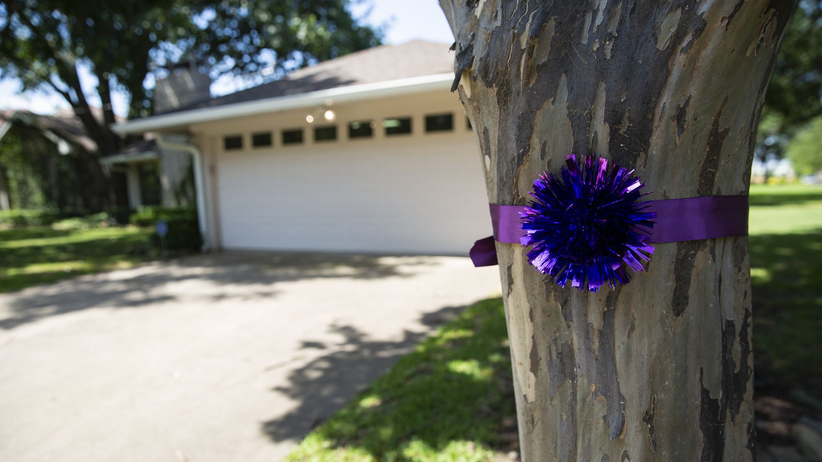 Neighbors dressed the trees lining the Baker home with violet ribbons in honor of Leslie Baker's memory.