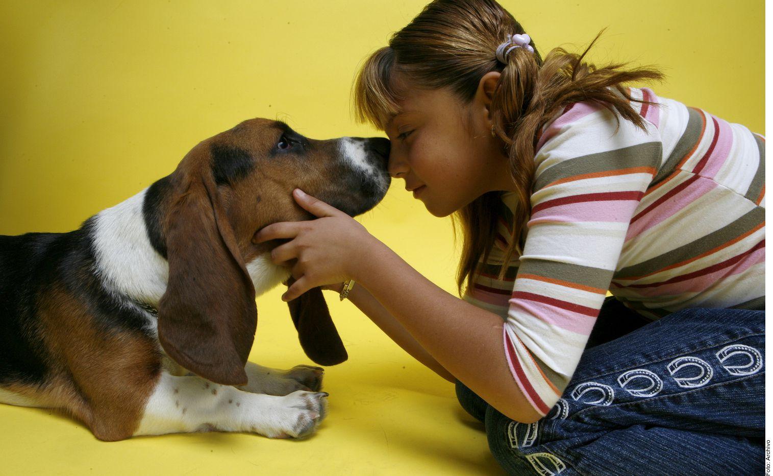 """Tener un perro y abrazarlo """"es una forma segura de reducir el estrés"""", asegura un estudio de la Universidad de Columbia Británica-Okanagan.."""
