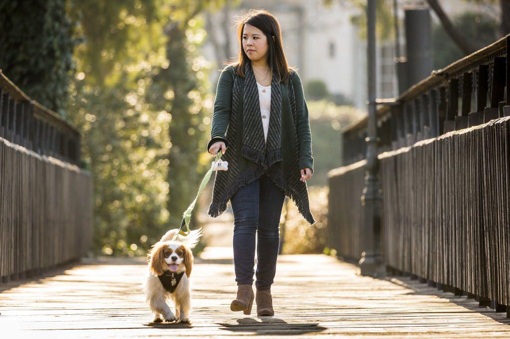 Ebola survivor Nina Pham walks her dog Bentley in Dallas.