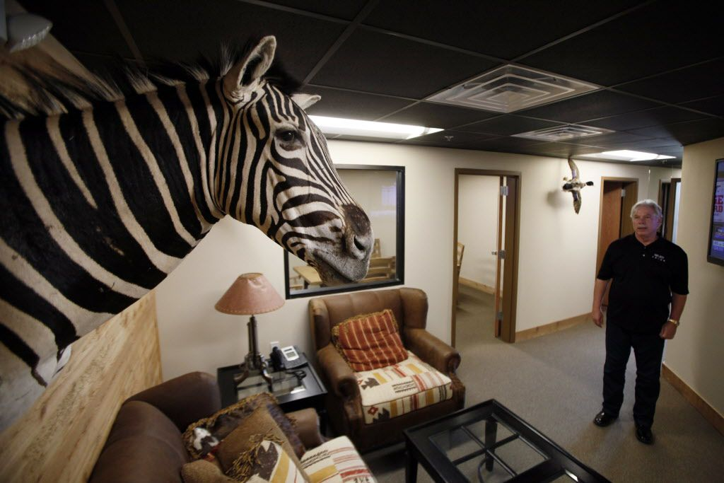 Fuel City owner John Banda, far-right, stands in the upstairs offices where a zebra head is on display at the new Fuel City gas station, on Wednesday, Sept. 23, 2015 in Mesquite. Ben Torres/Special Contributor