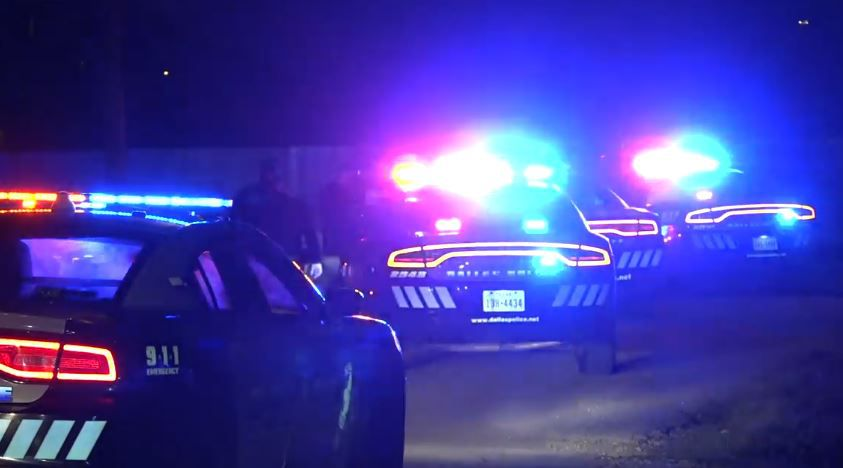 Several Dallas police squad cars line a street near when a 40-minute chase came to an end Friday morning.
