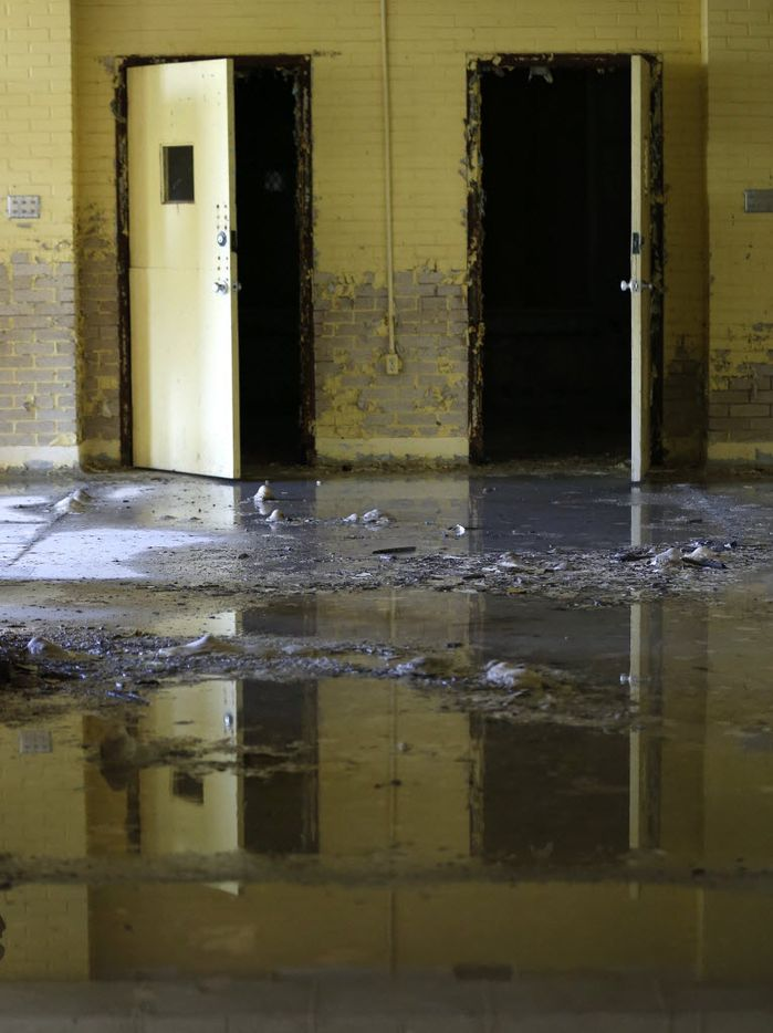 Water sits in the former children's ward and school, unoccupied since 1985, at the Terrell State Hospital in Terrell, Texas on April 21, 2016. (Rose Baca/The Dallas Morning News)