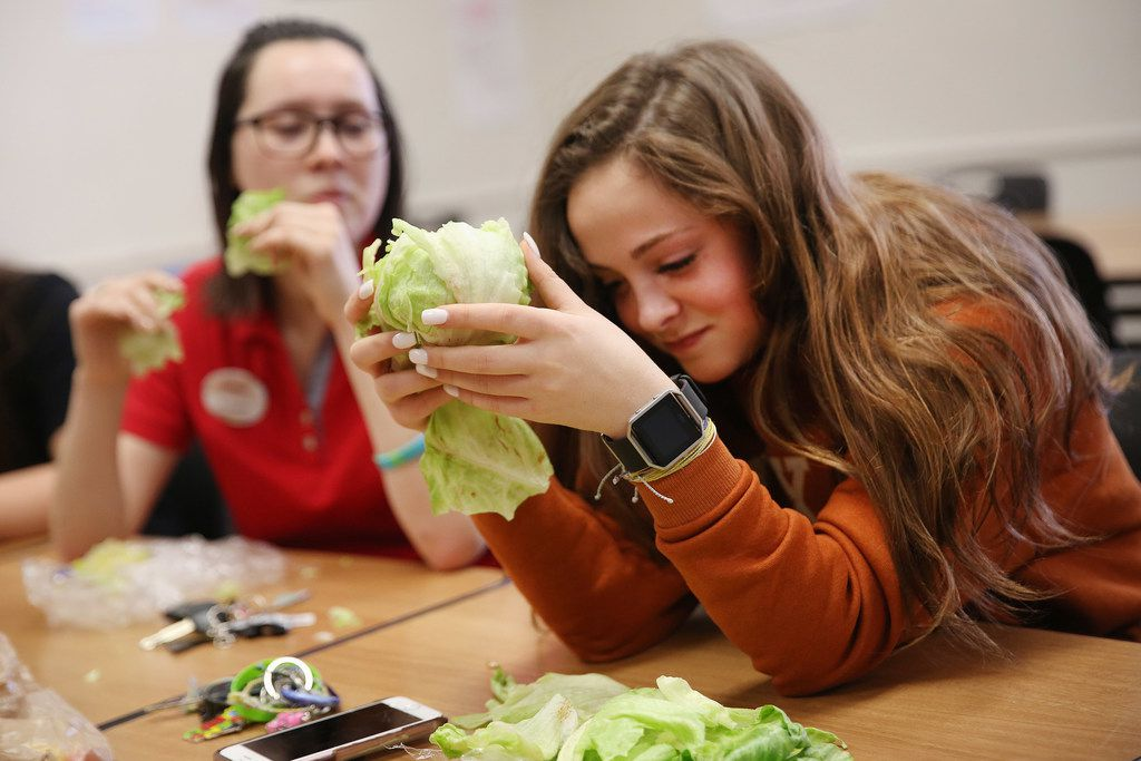 Senior Steph Halsey reacts while trying to eat a head of lettuce during a meeting of The Lettuce Club at Heritage High School on Tuesday in Frisco.