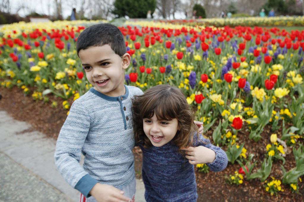 Ziad Awad, 5, left, and Zaina Awad, 3, check out the Dallas Blooms Festival at the Dallas Arboretum on Sunday, Feb. 28, 2016 in Dallas.