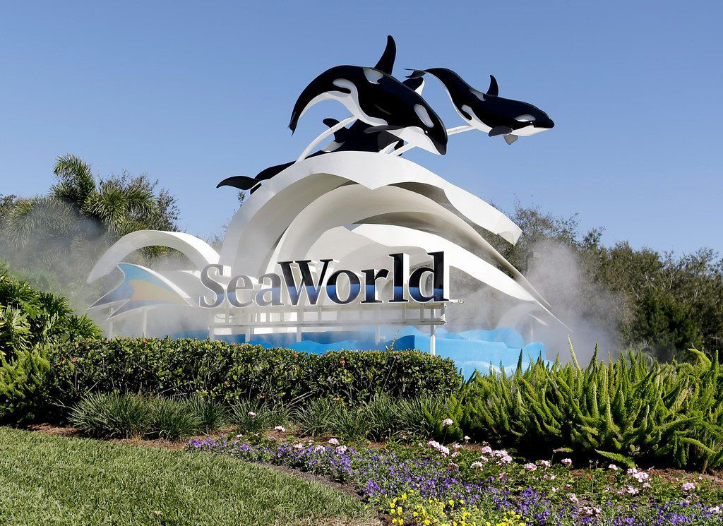 FILE - In this Tuesday, Jan. 31, 2017 file photo, the entrance to Sea World is seen, in Orlando, Fla. SeaWorld officials say an endangered beluga whale rescued off Alaska's coast is thriving in his new theme park home. The whale Tyonek was flown from the Alaska SeaLife Center in Seward, Alaska, to SeaWorld San Antonio in March.(AP Photo/John Raoux, File)