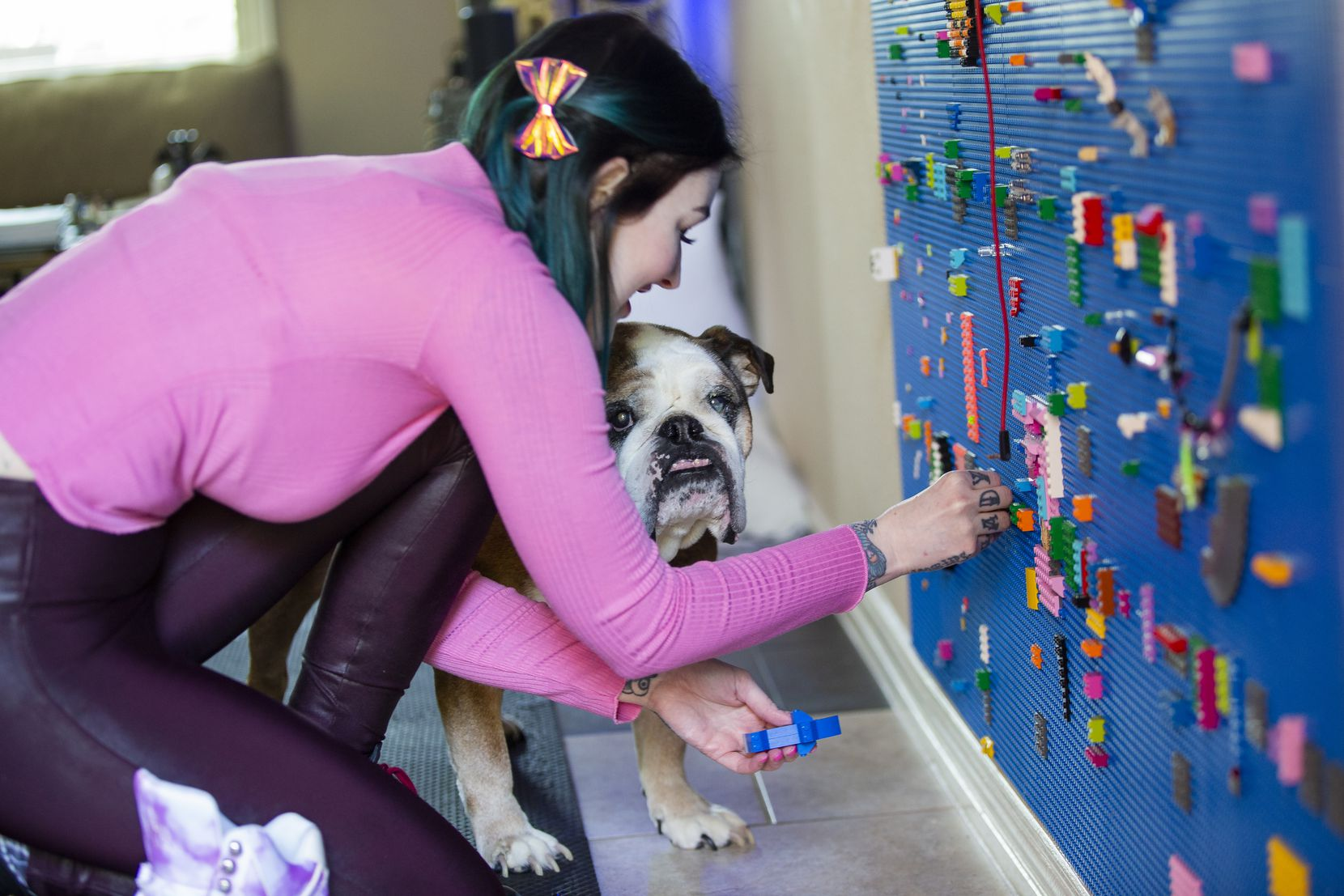 Amie Dansby and her dog, Indy, make some changes to Dansby's interactive Lego wall.