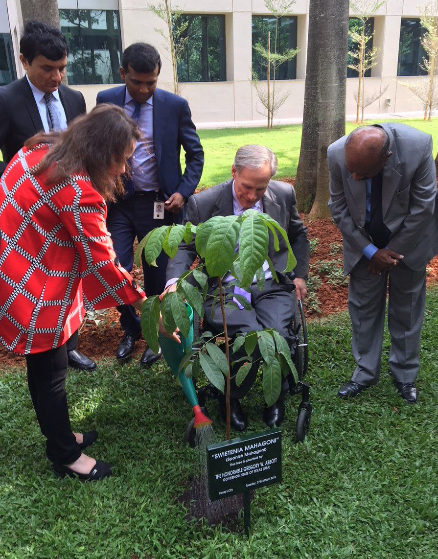 Texas first lady Cecilia Abbott and Gov. Greg Abbott water a Spanish mahogany tree they planted Tuesday, March 27, 2018, at the Bengaluru, India, headquarters of technology giant Infosys. (Robert T. Garrett/Staff)
