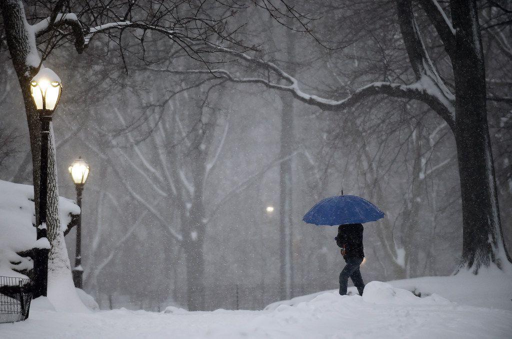 A pedestrian walks through New York City's snow-covered Central Park.