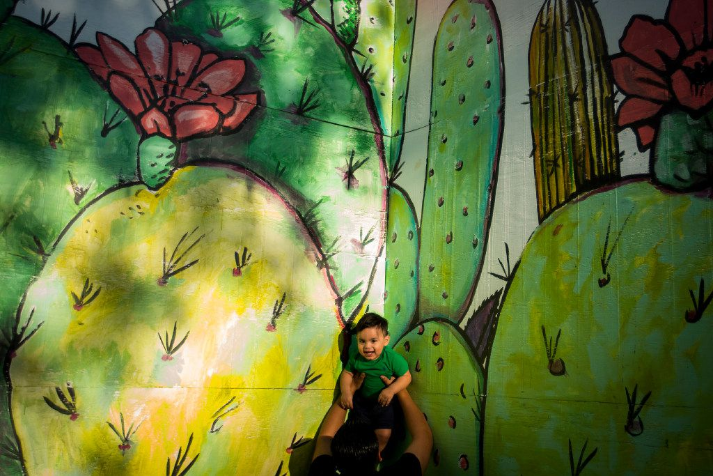 One-year-old Joel Robledo has his picture taken by family members against the cacti portion of the paintings at Bishop and Melba streets in the Bishop Arts District