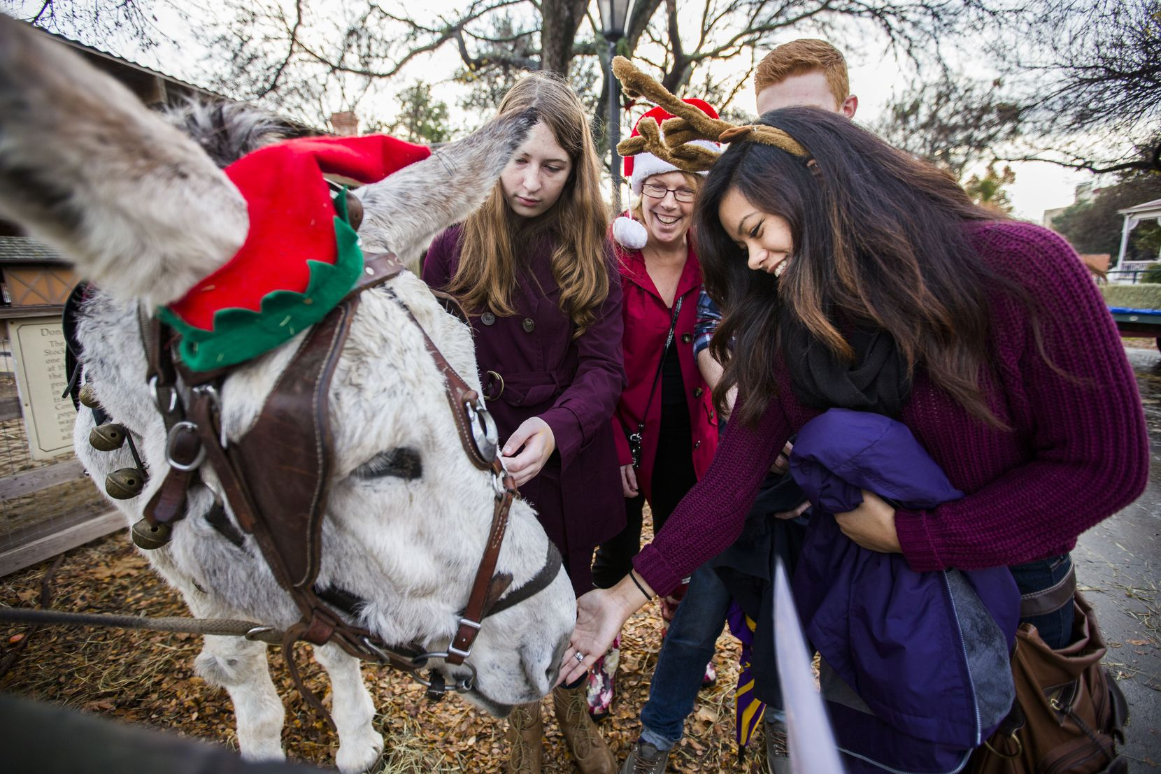 Festive donkeys and performers in period costumes are some of the highlights of Dallas Heritage Village's annual Candlelight event.