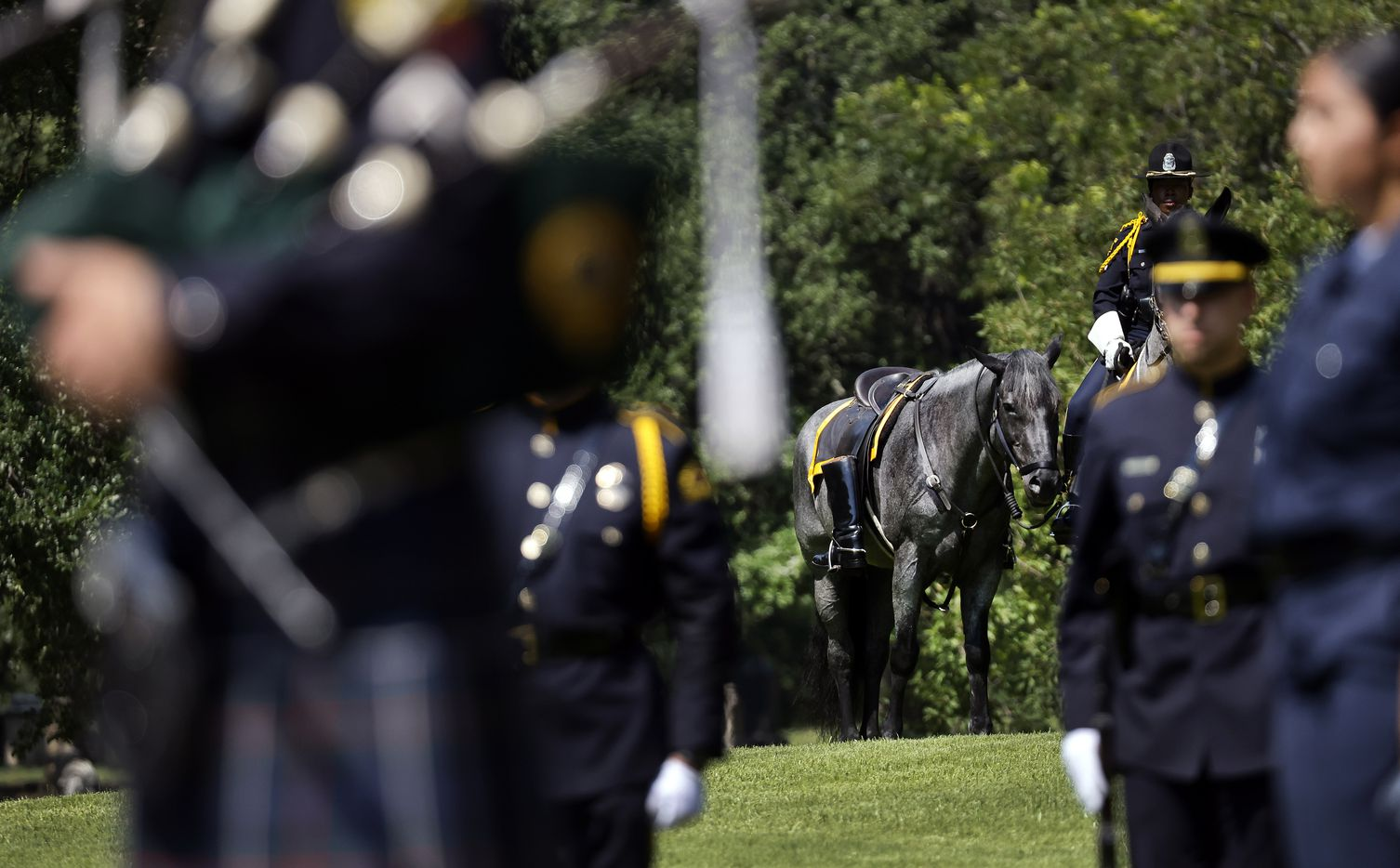 With officers boots reversed in the stirrups, a riderless horse stood atop a hill during the 2021 Police Memorial Day at the Dallas Police Memorial in downtown Dallas, Wednesday, July 7, 2021. It was the 5th anniversary of the July 7th ambush and special recognition was given to those officers who were killed. (Tom Fox/The Dallas Morning News)