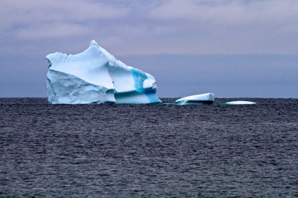The location of icebergs changes from day to day based on winds and other conditions. Be prepared to drive and hike to coastline for the best views.