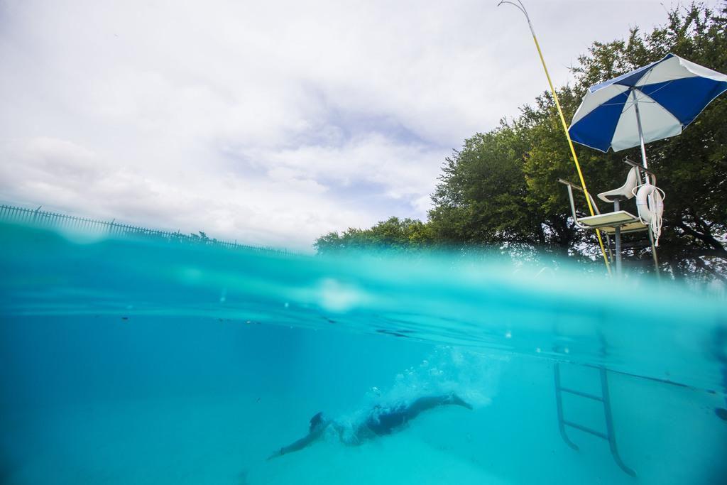 El salvavidas Moisés Zambrano  realiza un clavado en la alberca Bonnie View, una de las albercas de la ciudad que se pueden utilizar durante el verano. (DMN/CARLY GERACI)