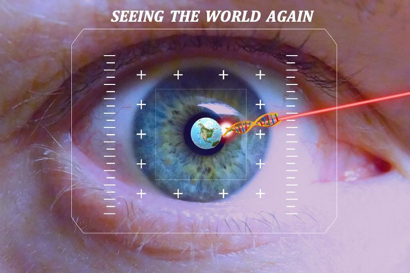 The procedure would restore vision in adults who are affected by macular degeneration.